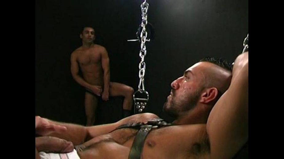 Heavy Encounter on a Fuck Swing, produced by be.me.fi. Video Categories: Euro, Fetish, Muscles, Leather, Uncut and Safe Sex.