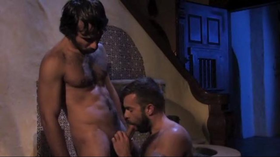 Young Hairy Arab Bears In the Desert Oasis, starring Steve Cruz and Aybars, produced by Falcon Studios Group and Raging Stallion Studios. Video Categories: Bear, Blowjob and Muscles.