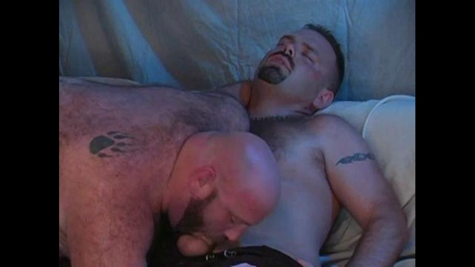 Big Hairy Bears in the Big Easy, starring Clint Taylor, Boyd Somers and Robert Elephante, produced by Bear Films. Video Categories: Leather, Blowjob, Anal, Bear and Threeway.