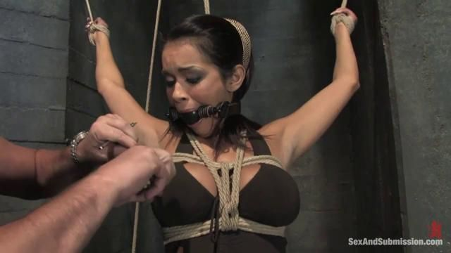 Daisy marie sex and submission rapidshare