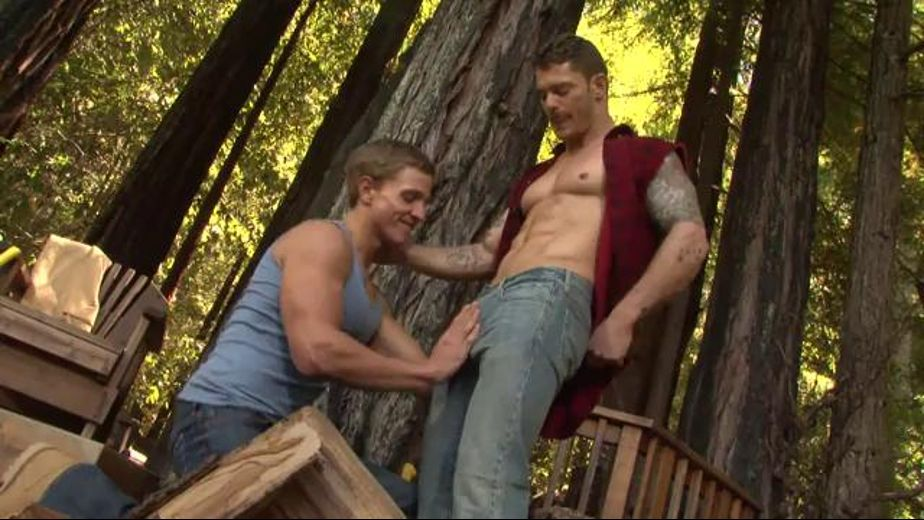Hard Wood for a Hotter Fire, starring Marcus Mojo and Mitchell Rock, produced by Falcon Studios Group and Falcon Studios. Video Categories: Muscles and Blowjob.