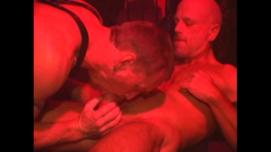 Will West In The Dungeon Bareback Party, starring Will West, produced by Hot Desert Knights Productions. Video Categories: Euro, Bareback and Leather.