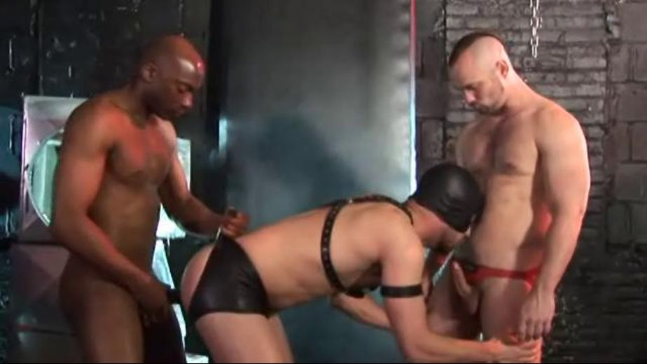 Black and White Cock Pig, starring Owen Hawk, Champ Robinson and Brandon Hawk, produced by Raw Fuck Club and Dark Alley Media. Video Categories: Blowjob, Anal, Interracial, Fetish, Bareback, Muscles, Leather and Big Dick.