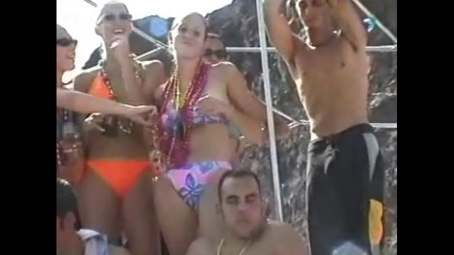 Nonstop Naked Titty and Pussy Boat Party, produced by GM Video. Video Categories: College Girls, Gonzo, Brunettes, Blondes, Redheads, Amateur and Natural Breasts.