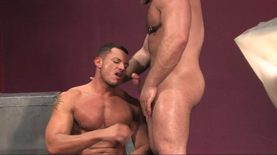 Muscle Men Angelo Marconi and Samuel Colt, starring Angelo Marconi and Samuel Colt, produced by Raging Stallion Studios, Hard Friction and Falcon Studios Group. Video Categories: Bear, Muscles and Safe Sex.