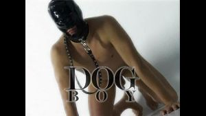 Obey Dog Boy.