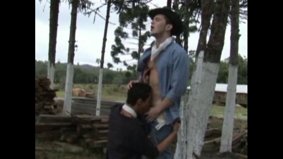 Bareback Cowboys of Brazil, starring Gabriel Learth and Arcanjo Dantes, produced by ZyloCo. Video Categories: Anal, Latin and Blowjob.