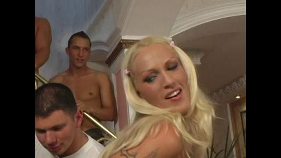 Blond Bitches in Gangbang with 8 Dudes, starring Kelly Kreeda and Michelle Ryley, produced by Robert Hill Releasing Co.. Video Categories: GangBang, Masturbation, Blondes and Anal.