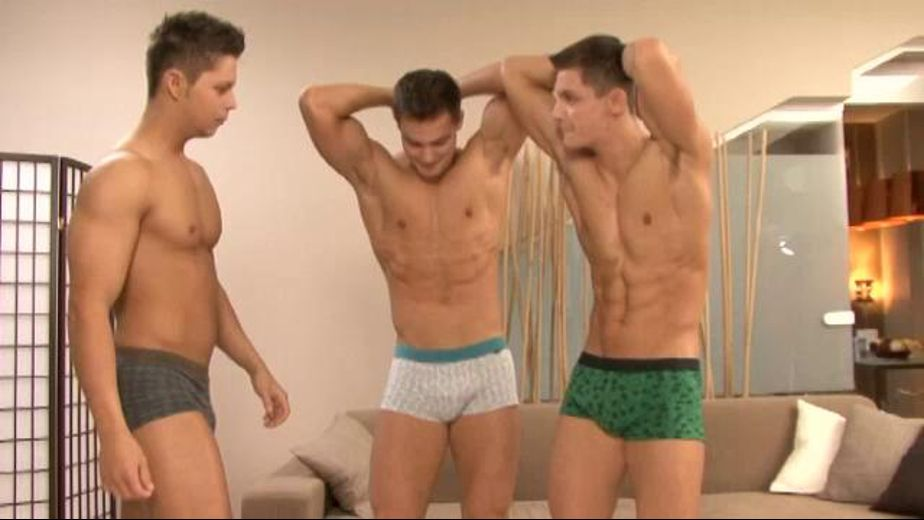 Double vision, starring Milo Peters, Elijah Peters and Ennio Guardi, produced by Bel Ami and Lukas Ridgeston. Video Categories: Euro and Muscles.