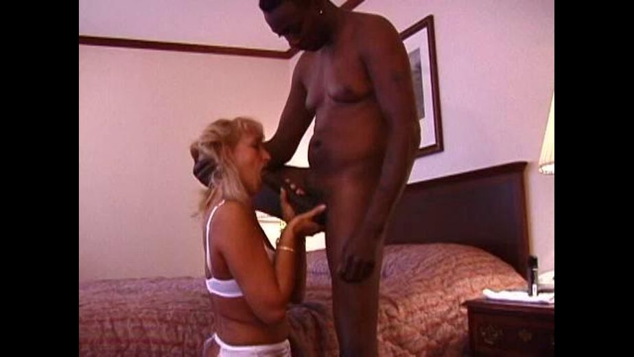 Dude You Could Have Had A Dell!, starring Susan Reno, produced by Reno X Entertainment. Video Categories: Amateur, Blondes, Mature, Anal, Gonzo, Interracial and GangBang.