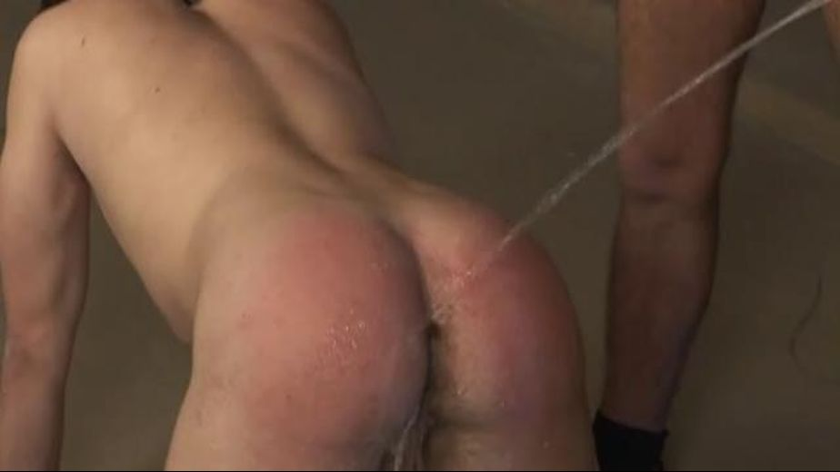Nothing Trumps A BareBack Piss Fuck, produced by Bareback Inc.. Video Categories: College Guys and Bareback.
