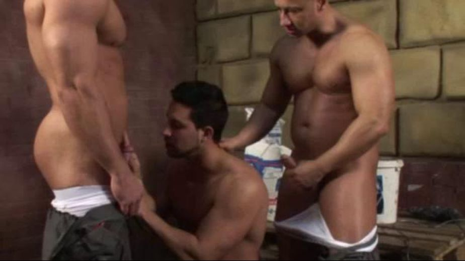 Muscle Men Triple Down, produced by Scary Fuckers. Video Categories: Blowjob, Threeway and Muscles.