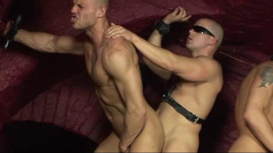 Banging Away In The Dungeon, starring Iron Mike, Peter Shadow, David Sweet, Black Angel, Win Soldier and Joe Justice, produced by White Water Productions. Video Categories: Orgies, Anal, Fetish, Euro, Bareback, Uncut, Muscles and Leather.