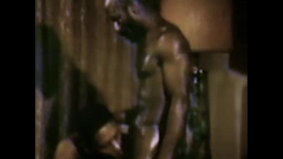 Vintage Black Fantasies, produced by Bijou Gay Classics. Video Categories: Black, Big Dick, Blowjob and Classic.