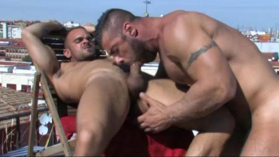Francesco D'Macho Is the Voyeur, starring Tommy Hawk, Damien Crosse and Francesco D'Macho, produced by Falcon Studios Group and Raging Stallion Studios. Video Categories: Muscles, Blowjob and Big Dick.