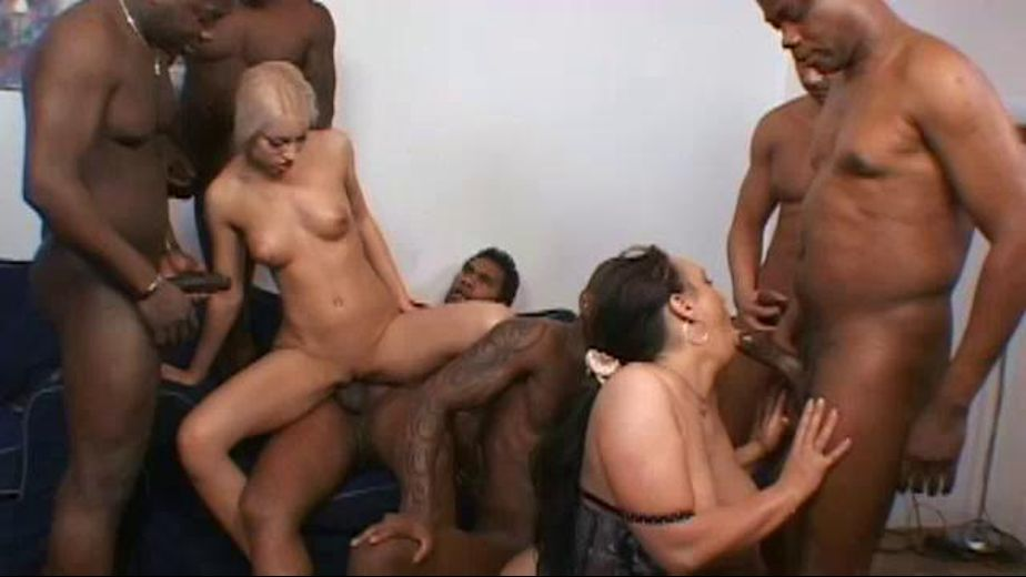 Everybody's Crazy About Sluts, starring Wesley Pipes, Franco Roccaforte, Joachim Kessef, Michael Chapman, Tony Brooklyn, Manuela, Valentina Rossi and Joss Lescaf, produced by K-Beech and Baby Doll Pictures. Video Categories: Blondes, Black, Brunettes, GangBang, Natural Breasts, Masturbation, Gonzo, Big Tits and Interracial.
