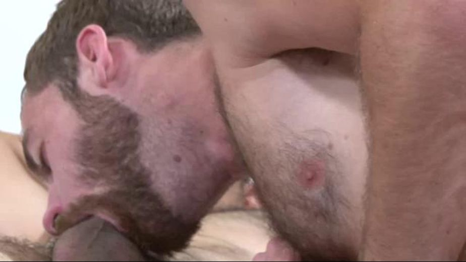 Living with The Bear Necessity, starring Derek Parker and Miguel Temon, produced by SX Video. Video Categories: Blowjob, Muscles, Latin and Bear.