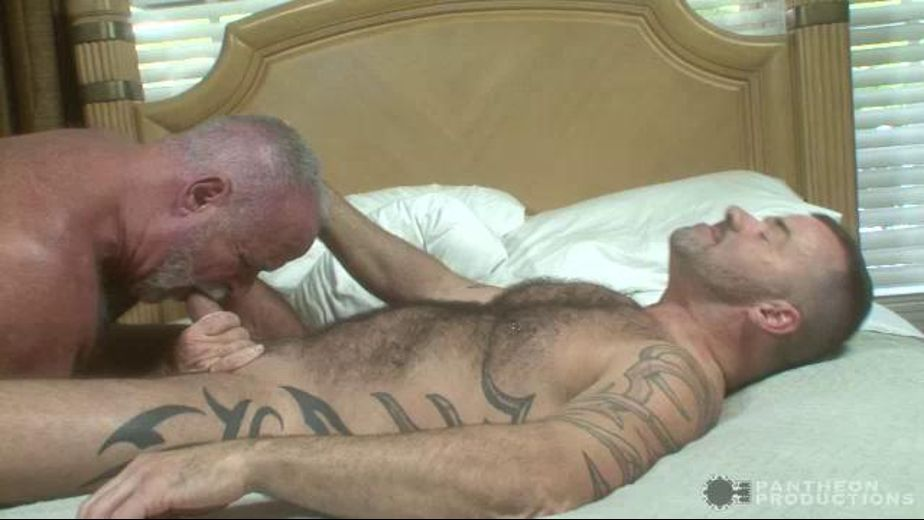 Merry Bear on Bear Action, starring Steve King and Jake Shores, produced by Pantheon Productions. Video Categories: Blowjob, Bear, Mature and Muscles.