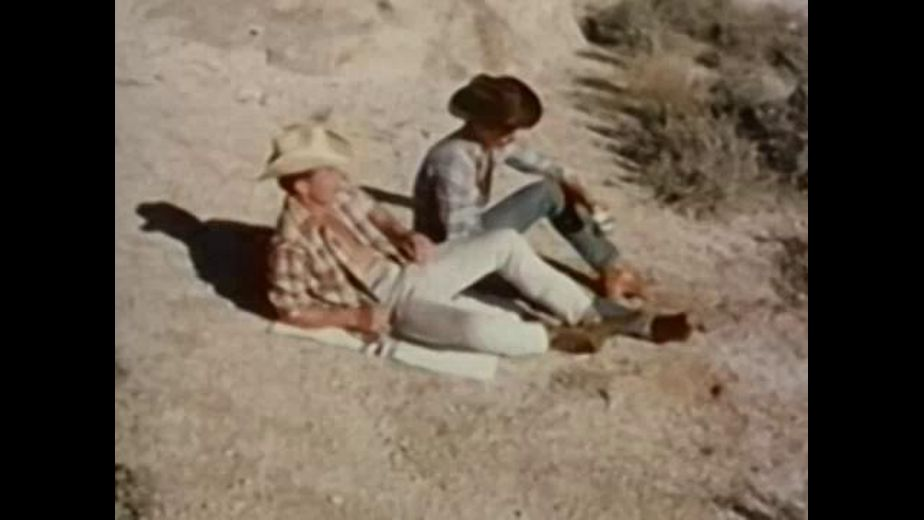 Cowboys Hot in the Desert, starring Will Seegers, Peter Bolt and John Colby, produced by Bijou Gay Classics. Video Categories: Classic and Muscles.