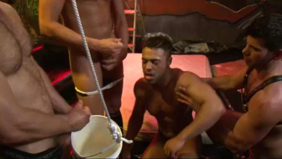Bathing in a Bucket of Piss, starring Tom Wolfe, Micah Brandt, Vito Gallo and Billy Santoro, produced by Lucas Entertainment. Video Categories: Pigs, Fetish, Blowjob, Leather and Muscles.