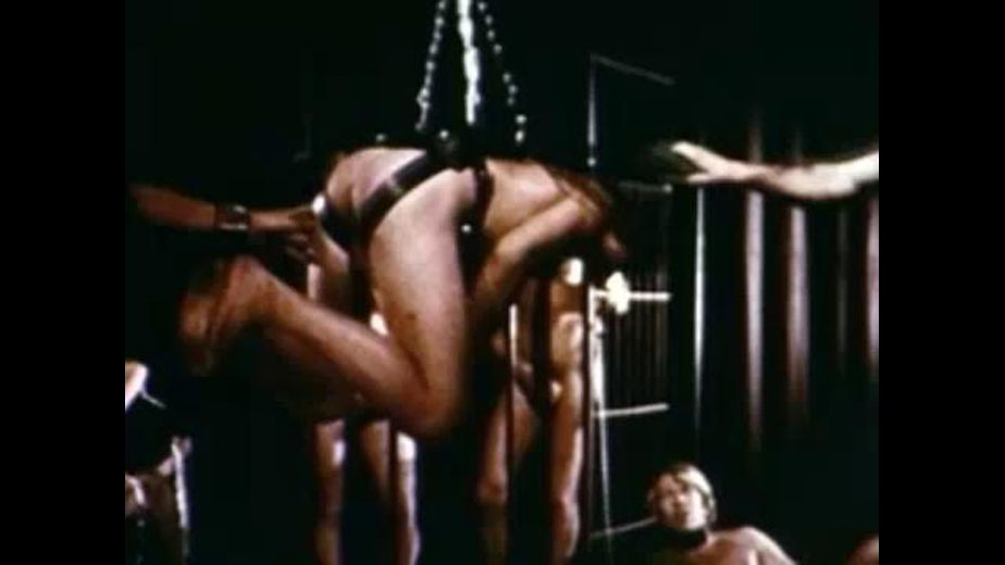 Classic and Brutal BDSM Party, produced by Bijou Gay Classics. Video Categories: BDSM, Fetish, Classic and Orgies.