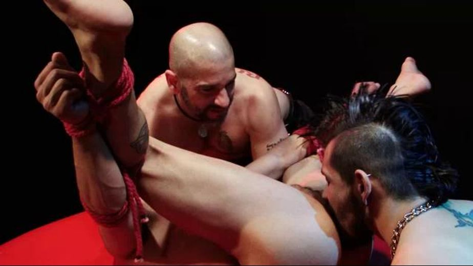 Armand Rizzo Tied Up And Helpless, starring Tony Buff, Draven Torres and Armand Rizzo (NO) USE - Armond Rizzo, produced by Falcon Studios Group and Raging Stallion Studios. Video Categories: Bear, Muscles, Safe Sex and Anal.