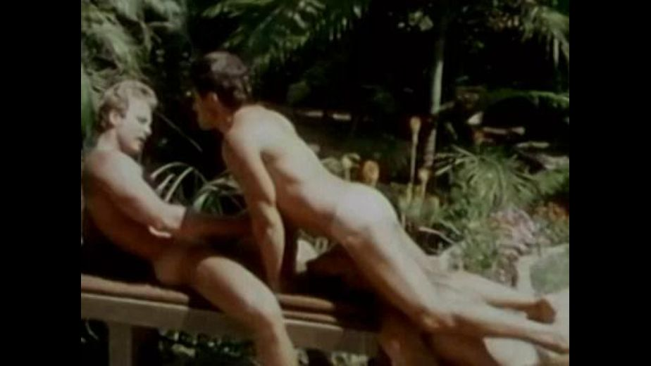 Three Boys In the Golden Sun, starring Josh Kincaid and Will Seagers, produced by Bijou Gay Classics. Video Categories: Threeway, Classic, Big Dick and Anal.