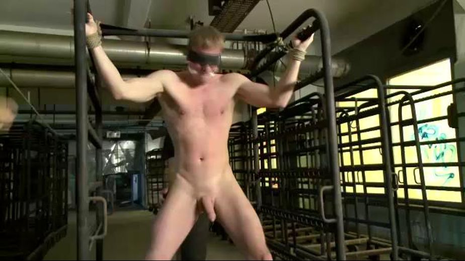 Hung Like a Piece of Meat on a Rack, starring Sebastian and Marco Schwarz, produced by KinkMen. Video Categories: BDSM, Blowjob, Euro and Fetish.