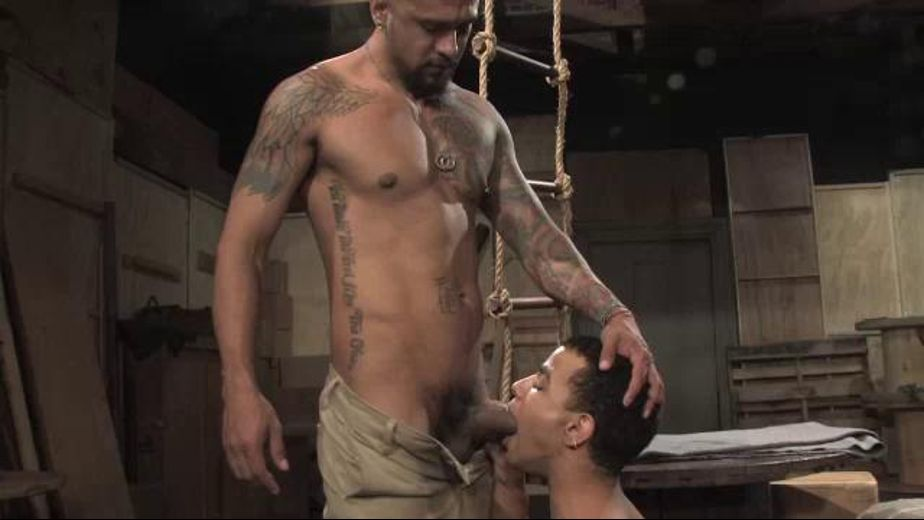 Big Bad Boomer Banks Has Something For You, starring Boomer Banks and Trelino, produced by Monster Bang, Falcon Studios Group and Raging Stallion Studios. Video Categories: Big Dick and Blowjob.