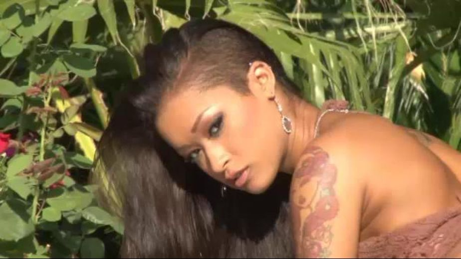 Skin Diamond hurt me, starring Toni Ribas and Skin Diamond, produced by Smash Pictures. Video Categories: Natural Breasts and Small Tits.