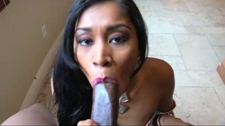 Ebony Blow Fish On Hardon, starring Yasmine de Leon and Rob Piper, produced by West Coast Productions. Video Categories: Gonzo, Black and Big Dick.