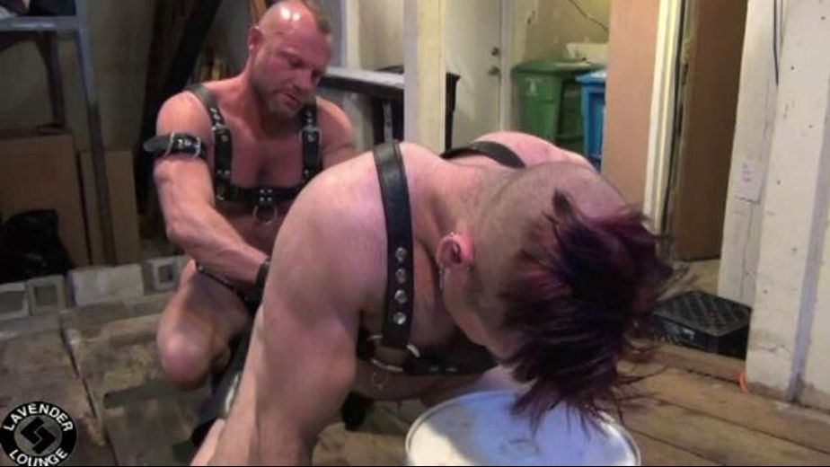 Big and Kinky Bareback Bears, starring Tober Brandt and Chad Brock, produced by Lavender Lounge Studios. Video Categories: Bareback, Muscles, Mature, Bear, Anal, Fetish and Leather.