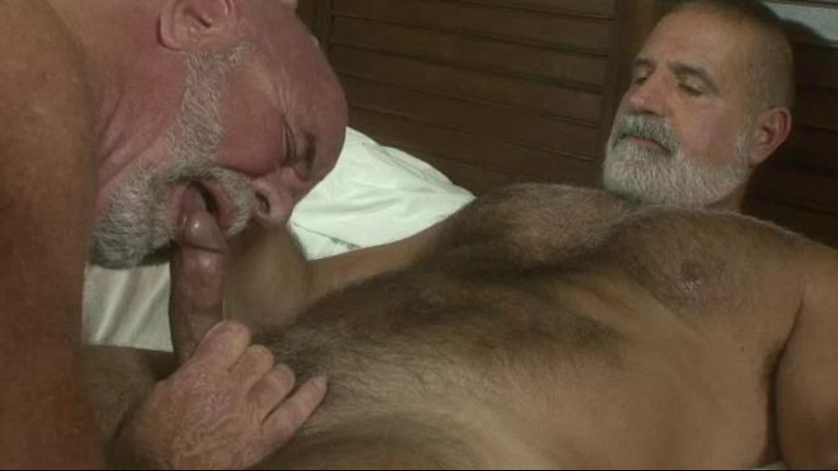 Old Men Have Young Hearts, starring Jake Shores, produced by Pantheon Productions. Video Categories: Bear and Safe Sex.