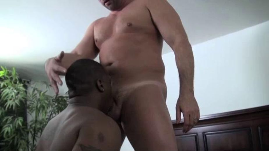 Thick Interracial Booty Fuck, starring Tyler Reed and Kane Rider, produced by USAJOCK. Video Categories: Amateur, Black, Bareback, Anal and Interracial.