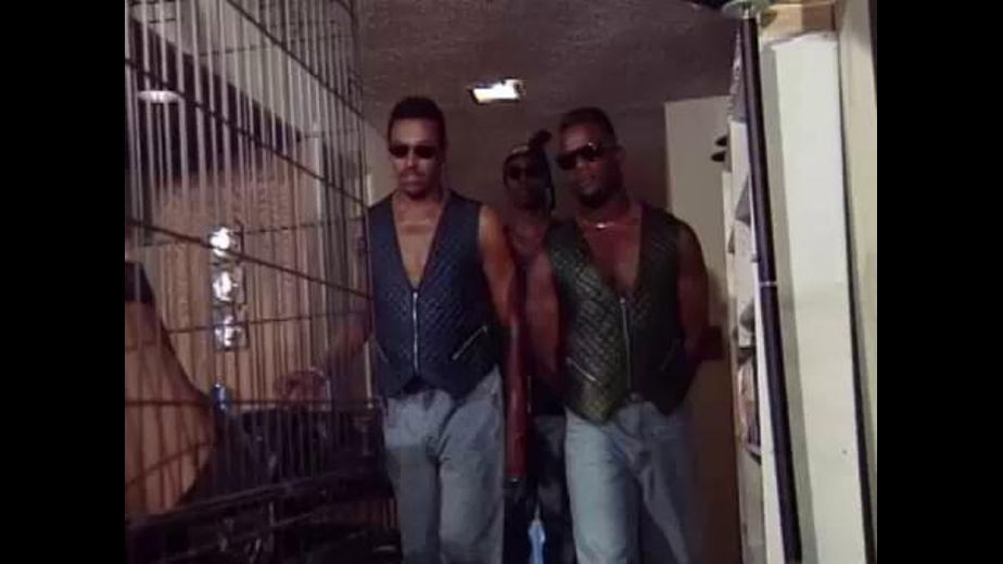 Vests Are Back In Style, starring Careena Collins, produced by Western Visuals. Video Categories: Anal and Interracial.