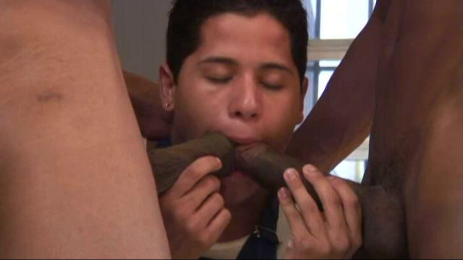 Sausage for the Pizza Boy, starring Tommy Lima, produced by Alexander Pictures. Video Categories: Threeway, College Guys, Euro, Interracial, Black, Safe Sex, Big Dick and Latin.