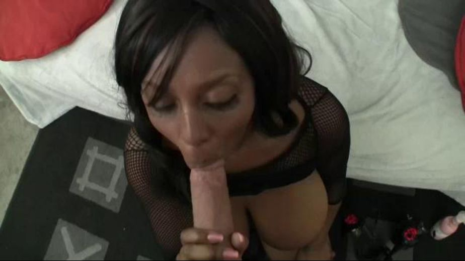 Black POV Slut, starring Ms. Panther, produced by Platinum X Pictures. Video Categories: Big Tits, Gonzo, Big Dick, Natural Breasts and Interracial.
