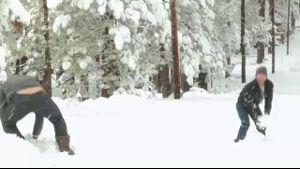 Snow balls.
