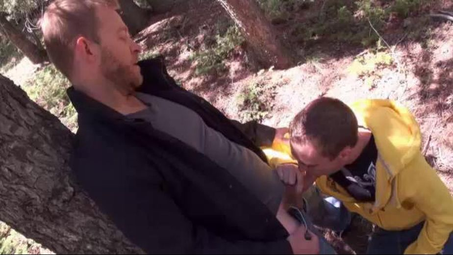 There's all sorts of wood in the outdoors, starring Aaron French and Hayden Alexander, produced by SUCK Off GUYS. Video Categories: Blowjob.