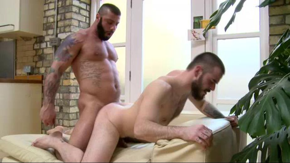 Big Scary Bears Get Wild, starring Alex Marte and Kris Irons, produced by Butch Dixon. Video Categories: Muscles, Big Dick, Euro, Anal, Bear, Bareback and Uncut.