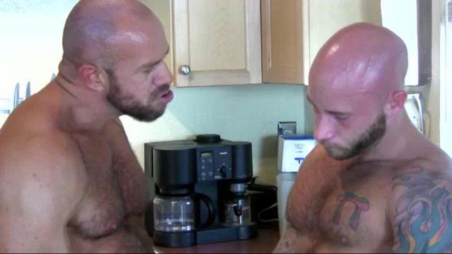Matthew Stevens Breeds Drake Jaden, starring Matthew Stevens and Drake Jaden, produced by Uk Naked Men and Butch Dixon. Video Categories: Euro, Safe Sex and Muscles.