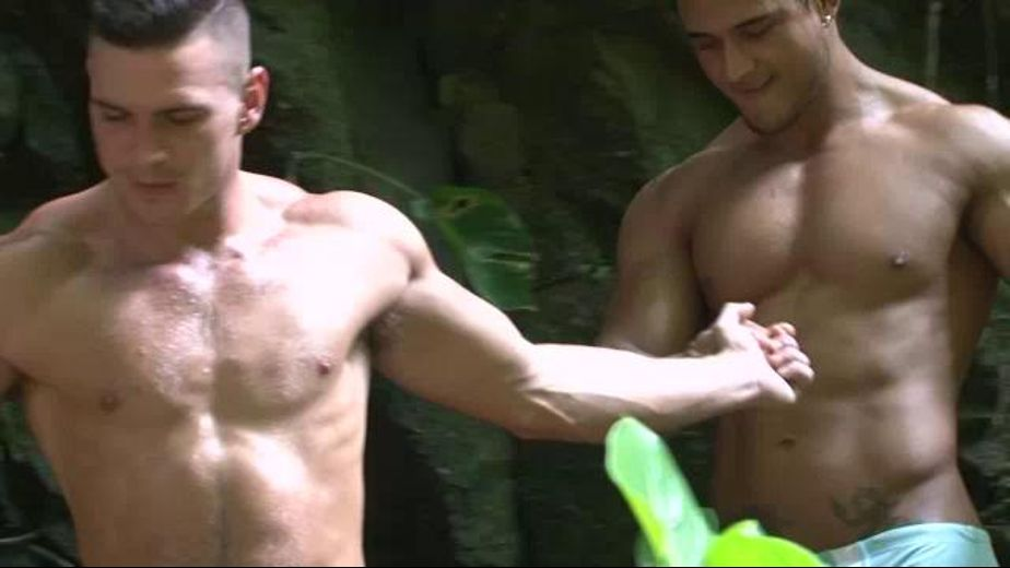 Banana Hammock Lovers Rejoice, starring Paddy O'Brian and Diego Lauzen, produced by Lucas Entertainment. Video Categories: Muscles and Safe Sex.