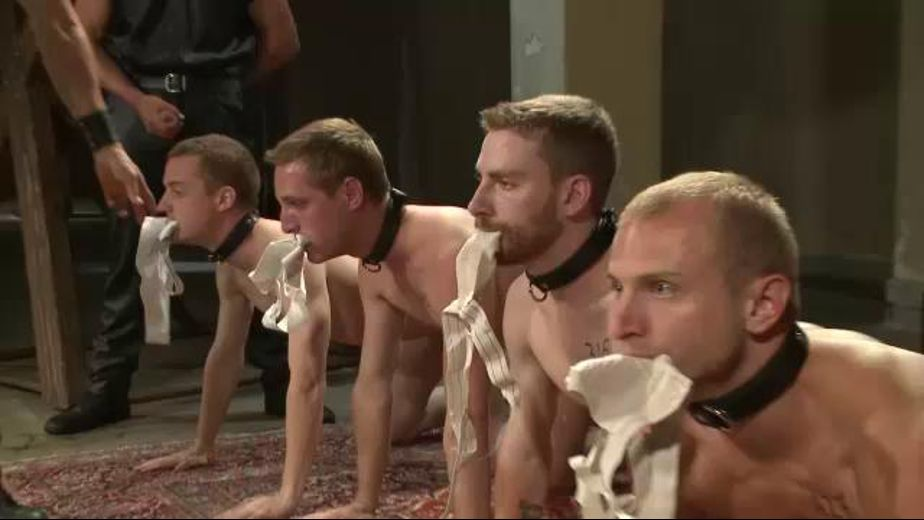 The Slave Auction Begins, starring Van Darkholme, Christian Wilde, Sebastian Keys, Dylan Deap, Randall O'Reilly, John Jammen, Holden Phillips, Lief Kaase and Rowen Jackson, produced by KinkMen. Video Categories: Fetish, Blowjob, BDSM and Leather.