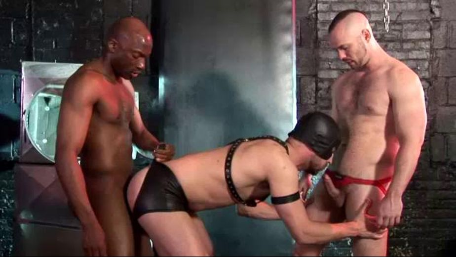 Masked Man Sucks Schlongs, starring Owen Hawk, Champ Robinson and Brandon Hawk, produced by Dark Alley Media. Video Categories: Interracial, Threeway, Muscles, Bareback, Fetish, BDSM and Anal.