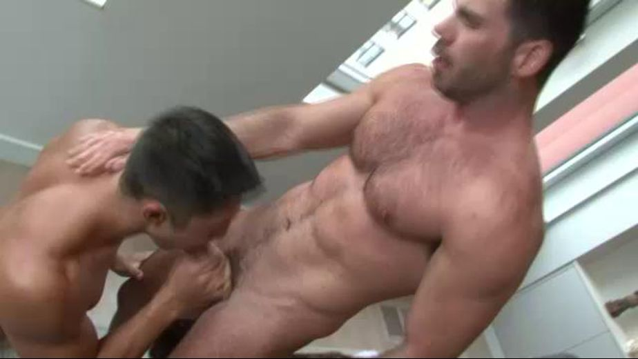 Seth takes Billys hard cock, starring Billy Santoro and Seth Santoro, produced by Lucas Entertainment. Video Categories: Bareback, Interracial, Blowjob, Uncut, Pigs, Muscles and Latin.