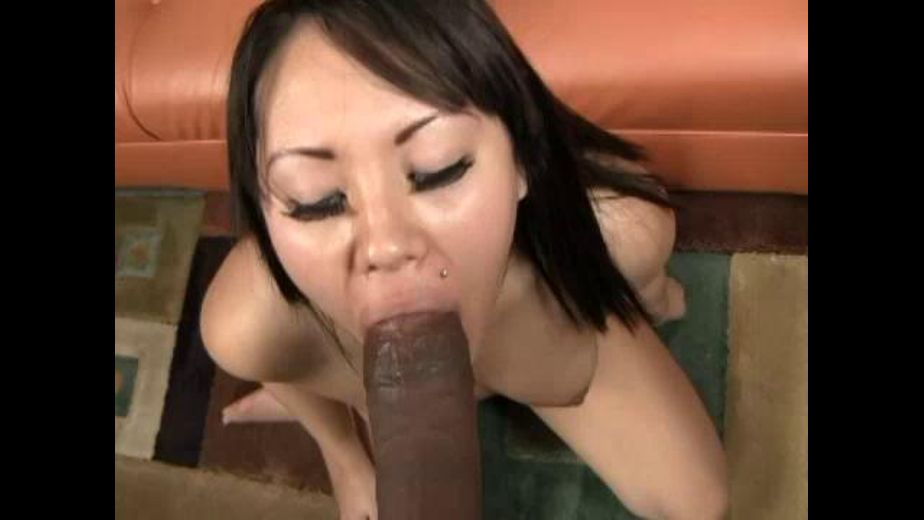 So Much Asian Flava To Love, starring Justin Long and Tina Lee, produced by Mile High Media and International Flavors. Video Categories: Asian, Black, Big Dick and Interracial.