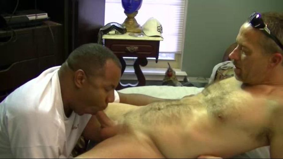 Rebel Daddy Face Fucks Black Dude, produced by Joe Schmoe Productions. Video Categories: Blowjob, Interracial, Black, Amateur and Mature.