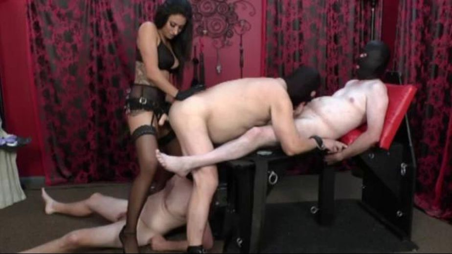 Tangent And Her Three Submale Sluts., starring Tangent, produced by Lakeview Entertainment. Video Categories: Big Tits, Anal, Brunettes, BDSM, Mature and Fetish.