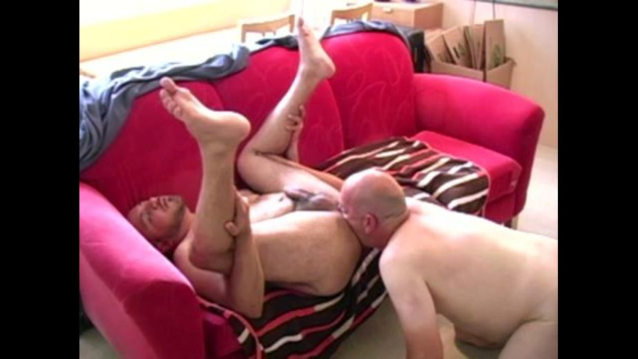 Some Fat and Mature Pigs, produced by The Great Canadian Male. Video Categories: Pigs, Mature, Safe Sex, Anal and Amateur.
