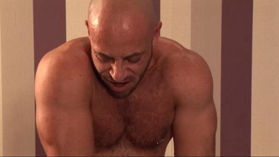 Mister Mustache Gets Ass Pounded, starring Samuel Colt and Bruno Fox, produced by Alphamales Studio and Eurocreme. Video Categories: Euro, Muscles, Safe Sex and Anal.